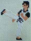 Kung fu cross stitch