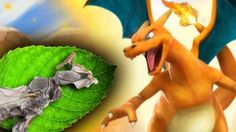 The Charizard Bee