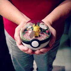 Awesome Pokemon Terrariums